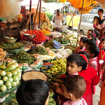 Vegetable Day - Field Trip