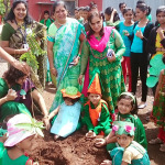 Environment Day Tree Plantation