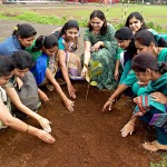 Tree Plantation - Junior College Celebrating Green Day 2014